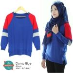 Domy-Blue